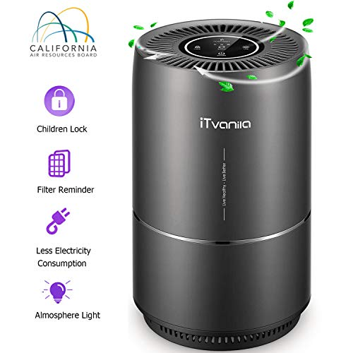 Air Purifier, iTvanila Air Cleaner for Home Pet Hair, Smokers, True HEPA Active Carbon Filter, Quiet in Bedroom,Filtration System Cleaner Eliminators, Removes Smoke Odor Dust, Warm Night Light