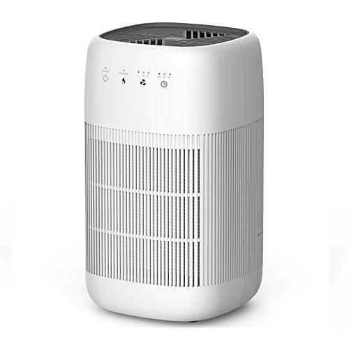 Air Purifier and Dehumidifier, Afloia Q10 True...