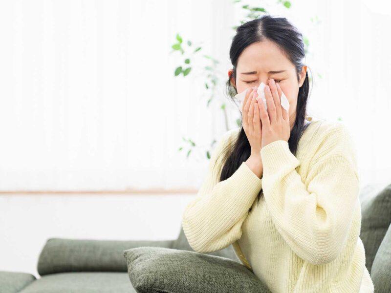 best humidifier for nosebleeds reviews