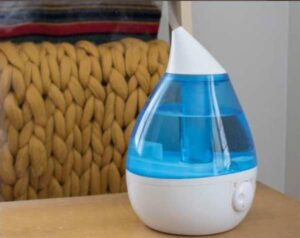 Can You Use A Humidifier Without The Filter