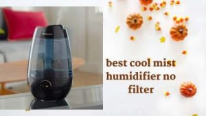 best cool mist humidifier no filter